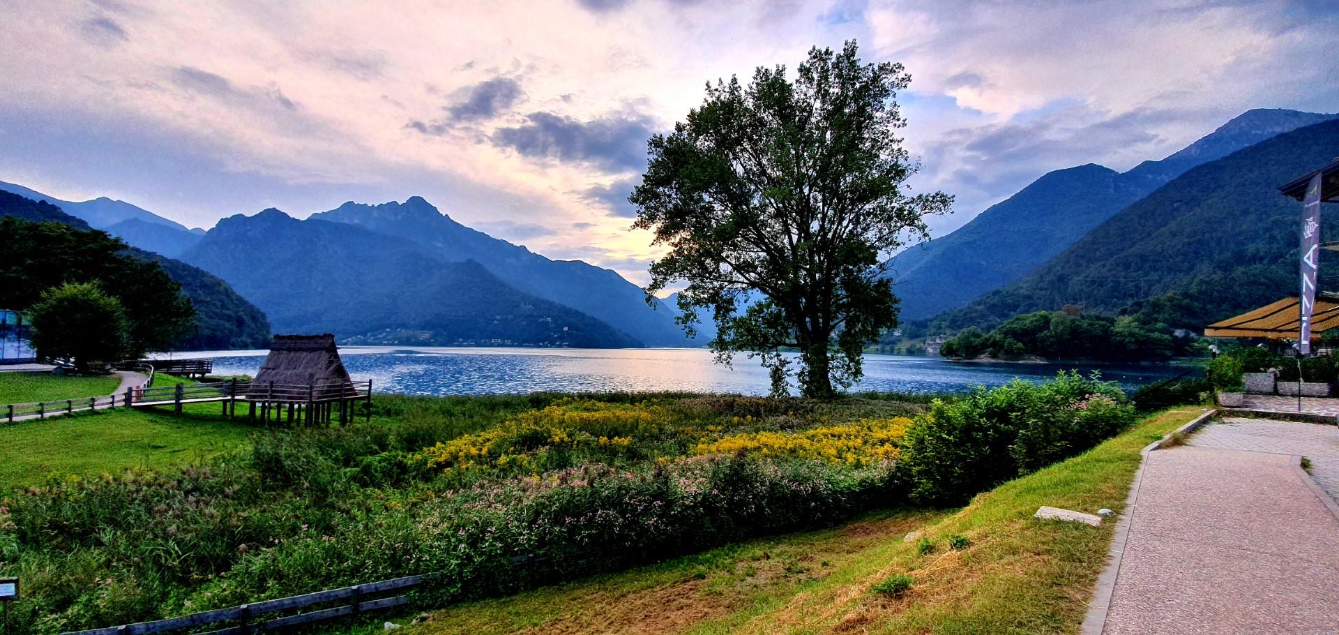MAlowniczo położone Lago di Ledro i otaczające je góry. Samotne drzewo.