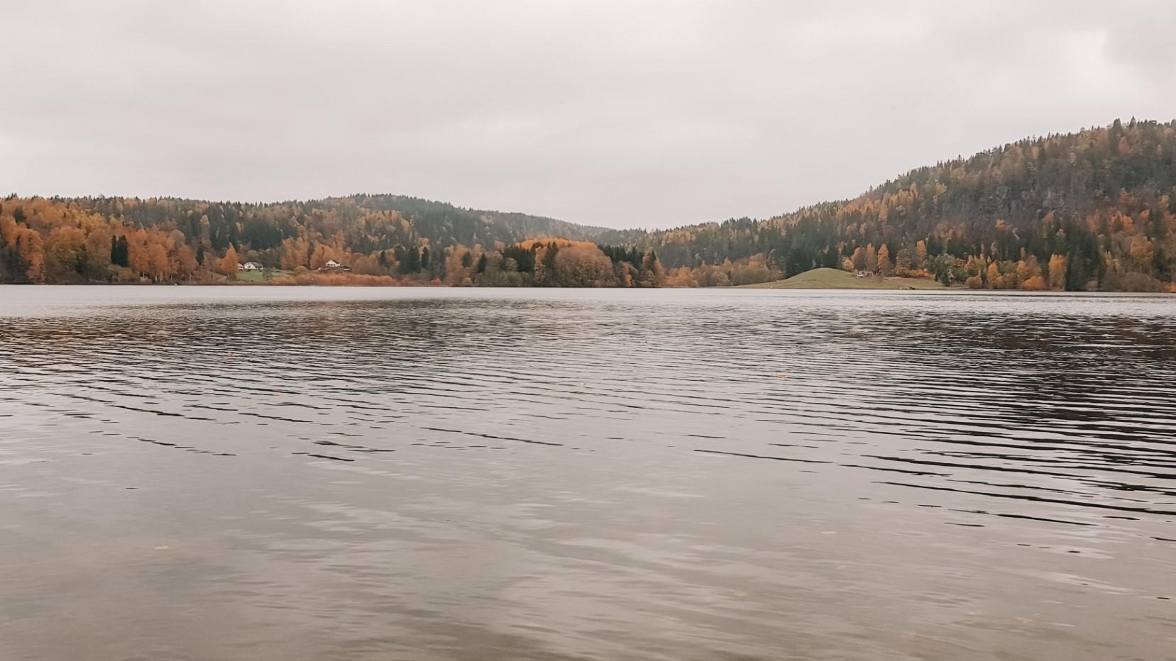 Widok na jezioro, jesienne kolory.