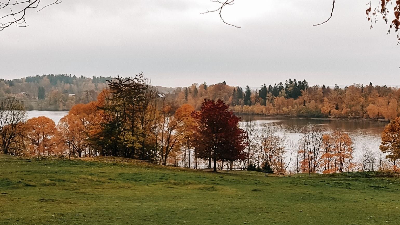 Widok na jezioro, jesienne kolory niedaleko Oslo.