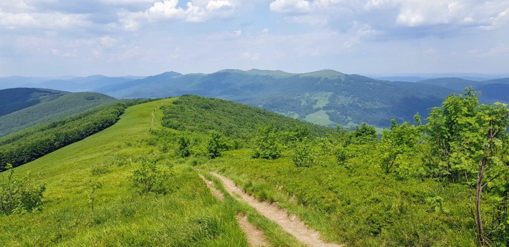 Zielone szczyty Bieszczadów.