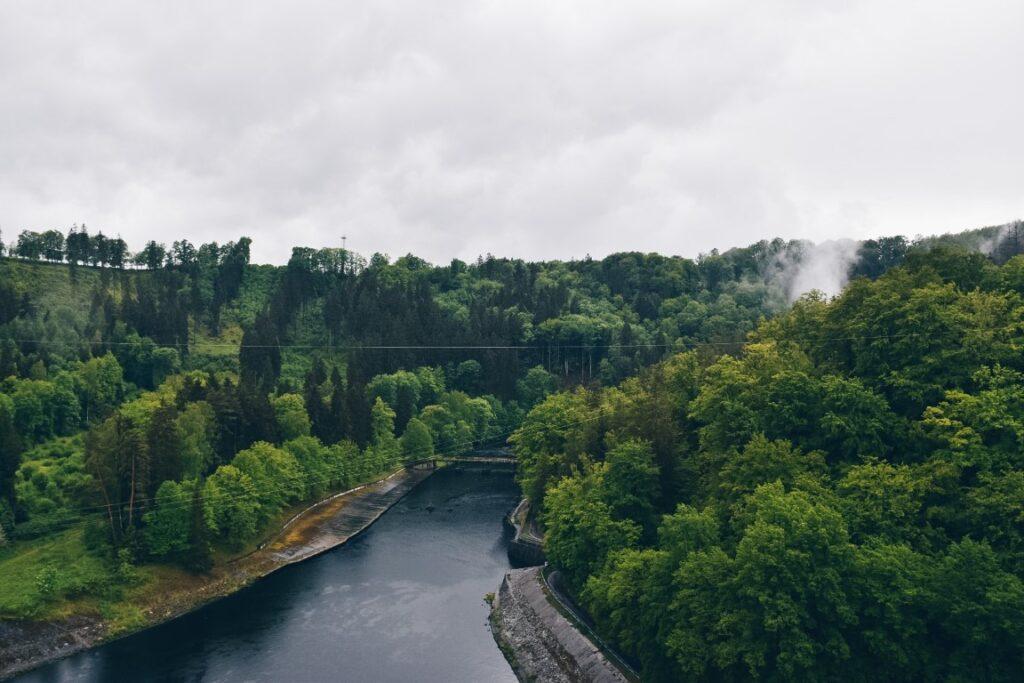 Rzeka otoczona zielonymi drzewami.