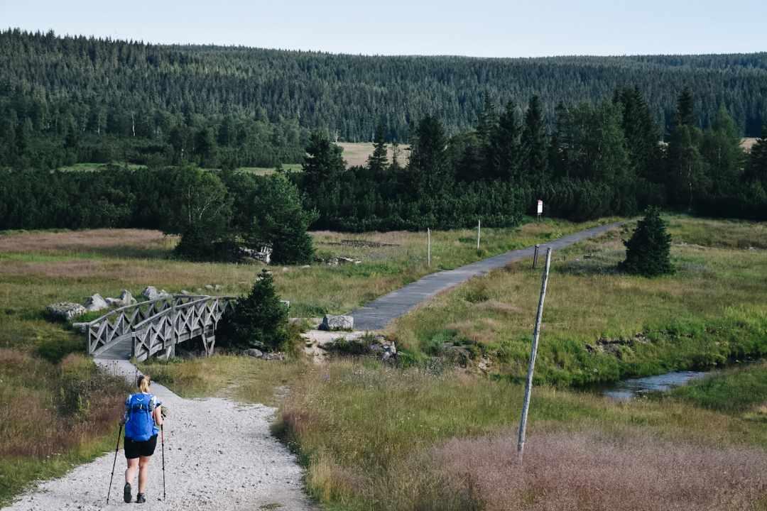 Turystka idąca górskim szlakiem. Zielona hala Izerska.