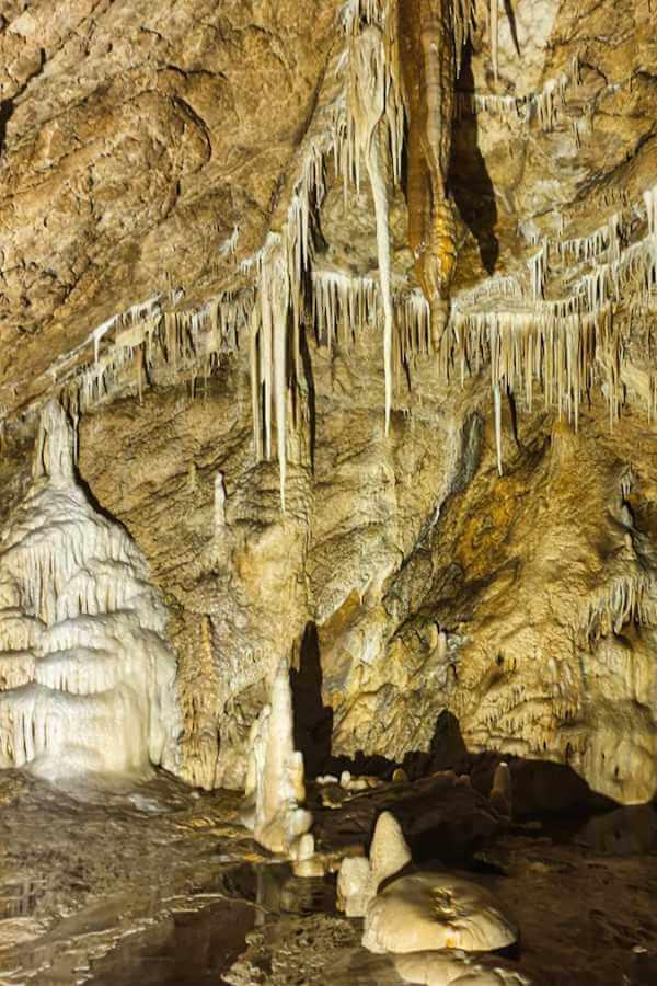 Jaskinia Niedźwiedzia i jej bogata szata naciekowa.